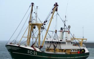 scheepsbetimmering sc31
